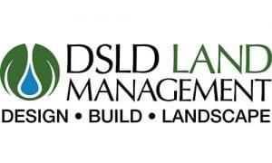dsd logo2