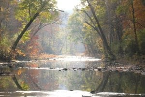 Are We There Yet Cahaba River Image Otters Home crop1 0032