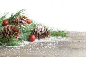 bigstock Christmas Card Pine Cone And 258664207
