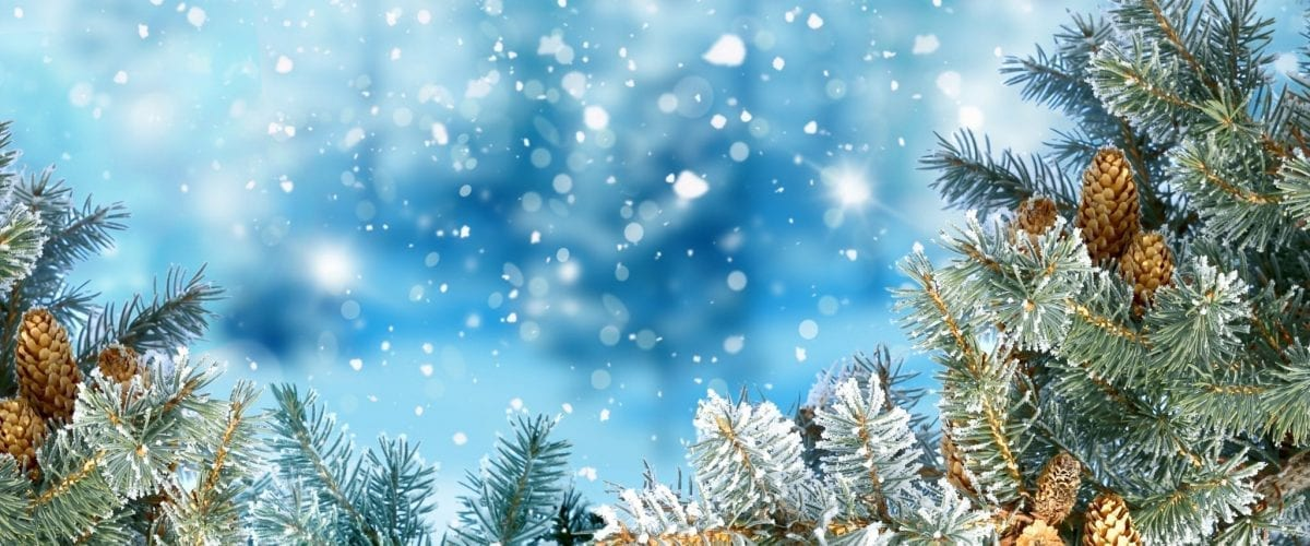 bigstock Winter Christmas background wi 157087073