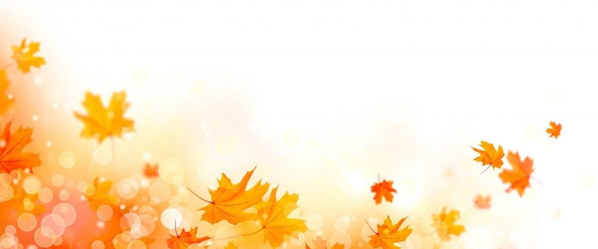bigstock Autumn background Fall Abstra 206260687