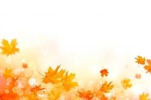 bigstock Autumn background Fall Abstra 206260687