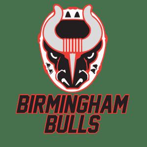 12 Gifts Bham Bulls logo