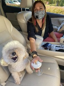 Cassie and her owner Kim in the car.