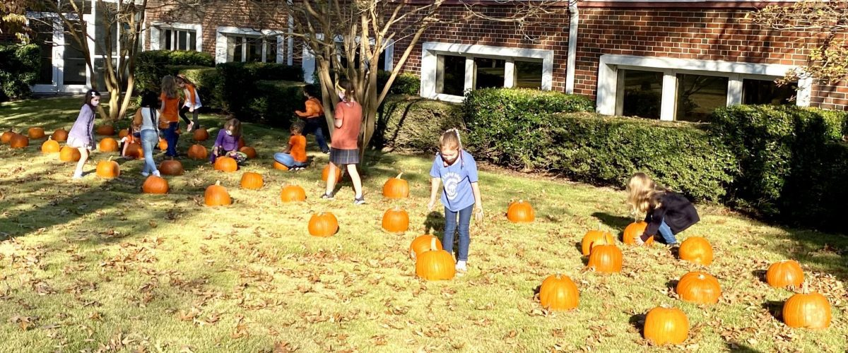 OLS School Pumpkin Patch