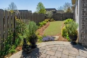 Backyard with Plants